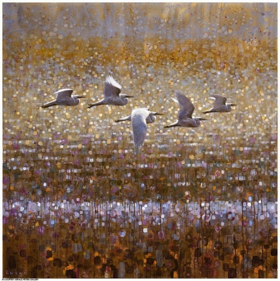 ewoud-de-groot-wildlife-birds03