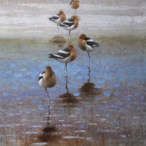 ewoud-de-groot-wildlife-resting-american-avocets-2013