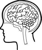 Health Office / Concussion Information