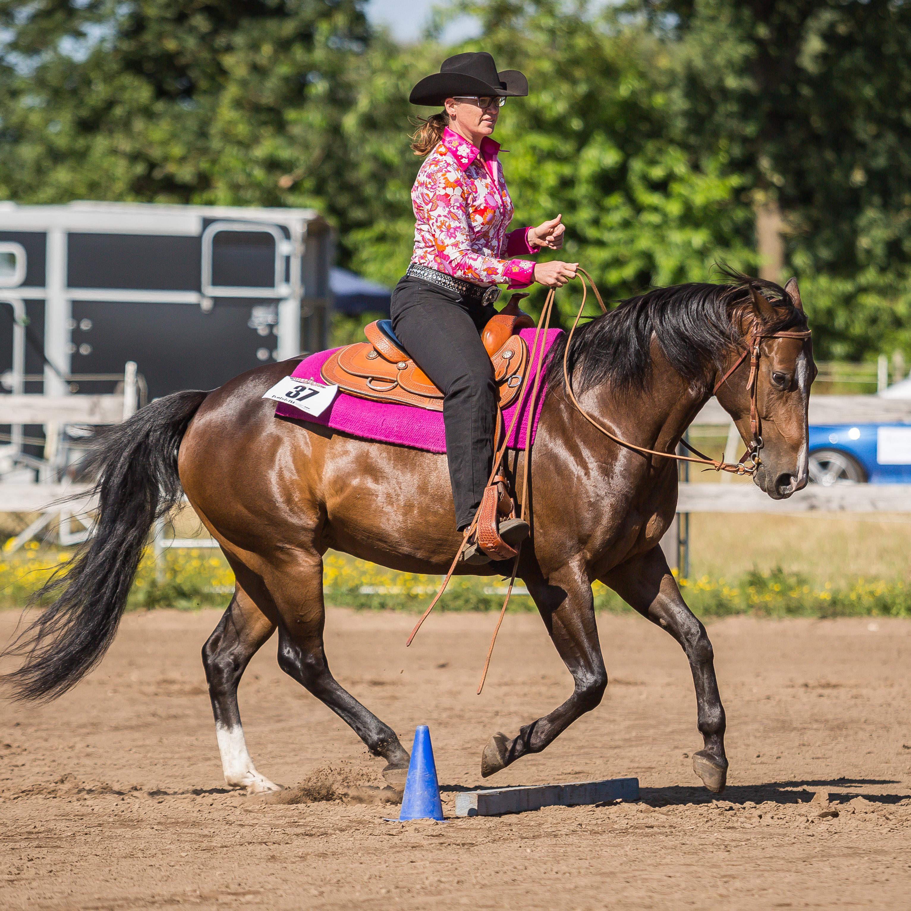 Turniervorbereitung mit Videoanalyse (in Anlehnung an das Horsemanship Symposium)
