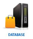 Fully managed database server