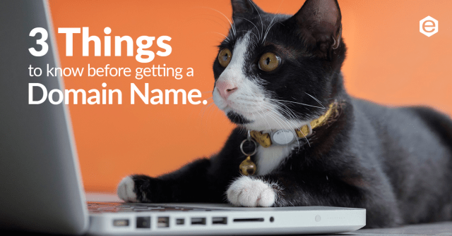 3 things to know before getting a domain