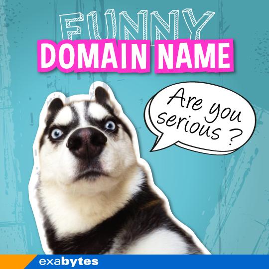 funny domain name exabytes