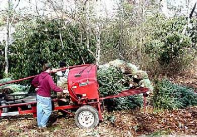 Used Christmas Tree Balers For Sale