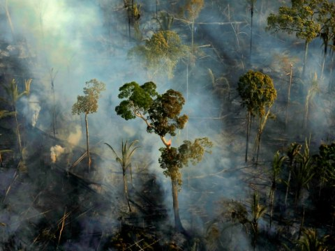 Smoke billows from a fire in an area of the Amazon rainforest near Porto Velho, Brazil, September 10. Photo: CNS/Reuters