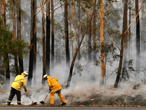 Firefighters attempt to contain a bushfire along a highway near Ulladulla, Australia, on January 5. Photo: CNS/AAP via Reuters