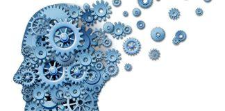 Ujian Psikometrik Penolong Kastam WK29