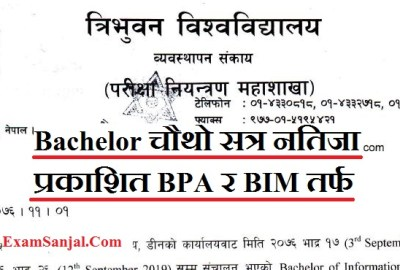 Result Published BIM and BPA 4th Semester Regular Examination 2019 ( BIM & BPA Result by TU)