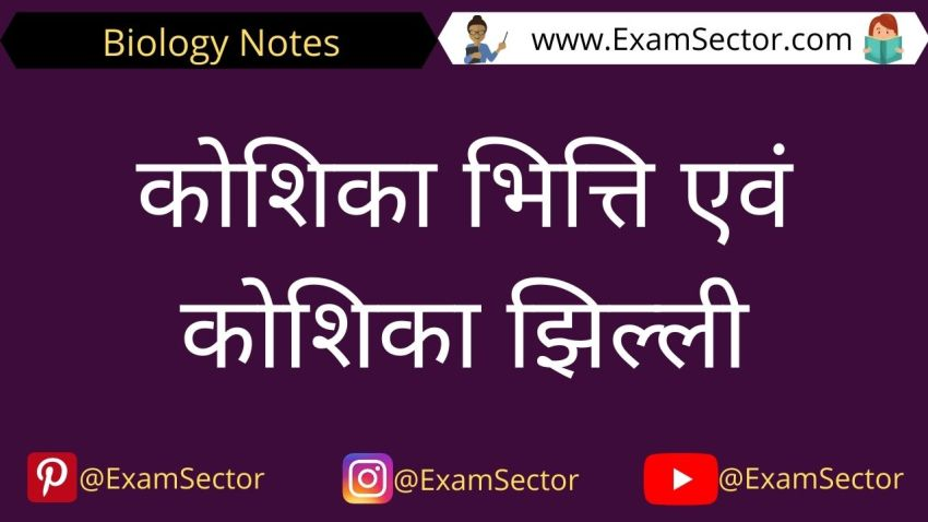 Plasma Membrane And Cell Wall in Hindi