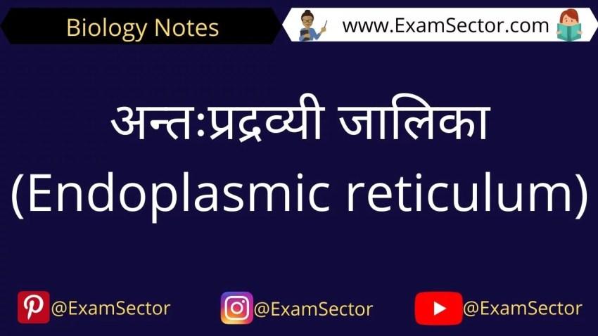 Endoplasmic Reticulum Notes in Hindi