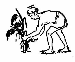 MSCP Symbol
