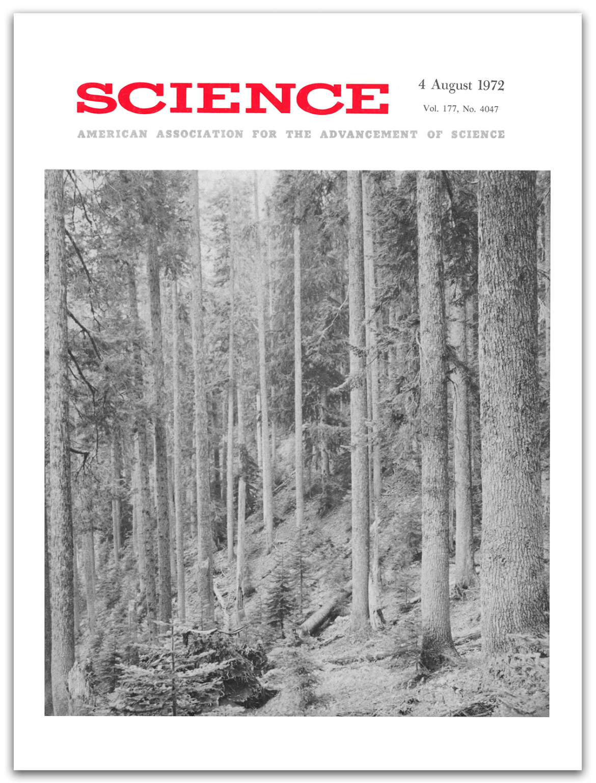 Cover of Science, Vol 177, Issue 4047 04 August 1972
