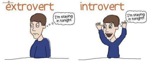 extrovert-introvert