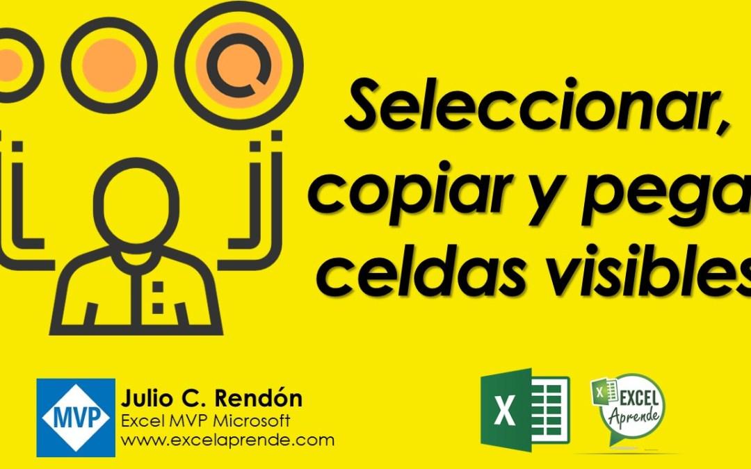 Seleccionar, copiar y pegar celdas visibles | Excel Aprende