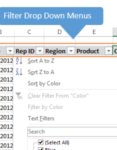 Excel filter drop down menus also keyboard shortcuts for the in rh excelcampus