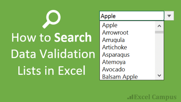 how-to-search-data-validation-lists-in-excel-cover-640x360