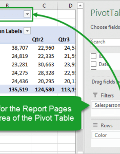 Add field for report pages to filters area of pivot table also create multiple reports with show filter rh excelcampus
