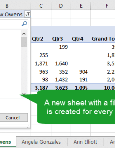 Results of show report filter pages new sheet with filtered pivot table also create multiple reports rh excelcampus