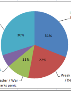 Pie chart with both outside and center labels here is what it looks like image also how to make  wsj excel inside rh exceldashboardtemplates