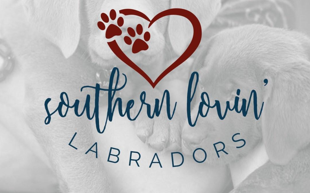 Labrador Breeder Brand Identity & Website