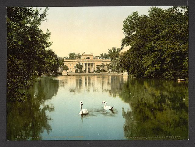 Swans on the lake at the Lazionki (Lazienki) Castle in Warsaw, Poland (Library of Congress image).