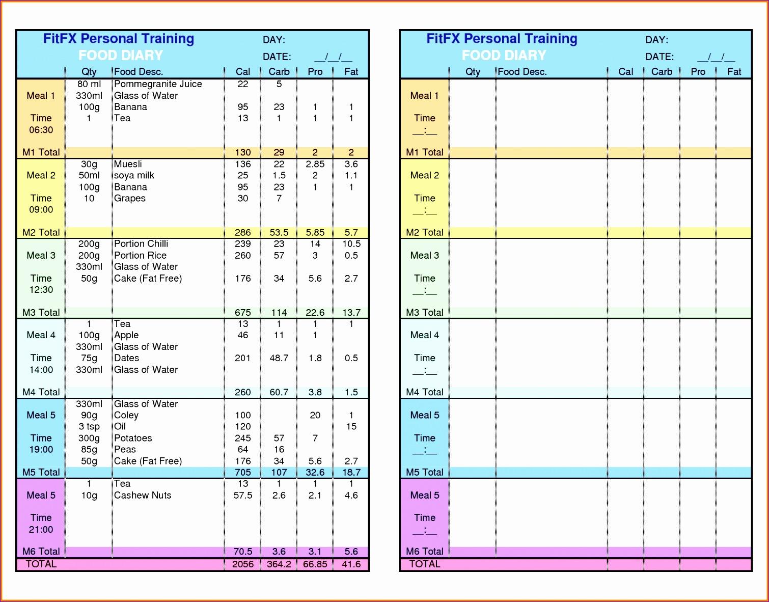 9 Food Journal Excel Template