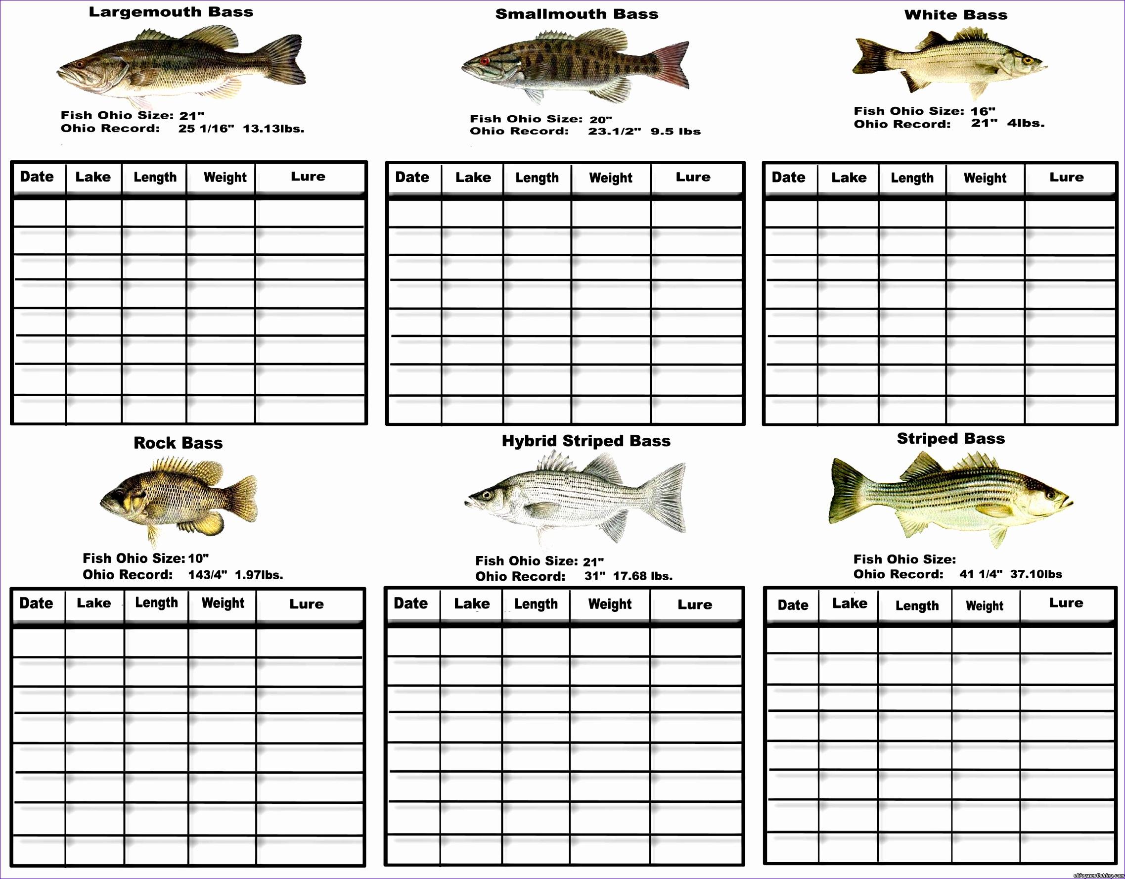 14 General Journal Excel Template