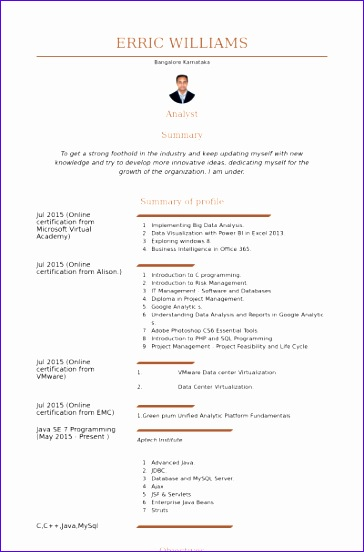 Tfs Sample Resume Resume Examples Resume Template