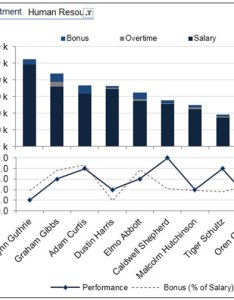 Chart summary compensation and performance by employee img also human resource dashboard  nice use of excel column bar rh exceltip