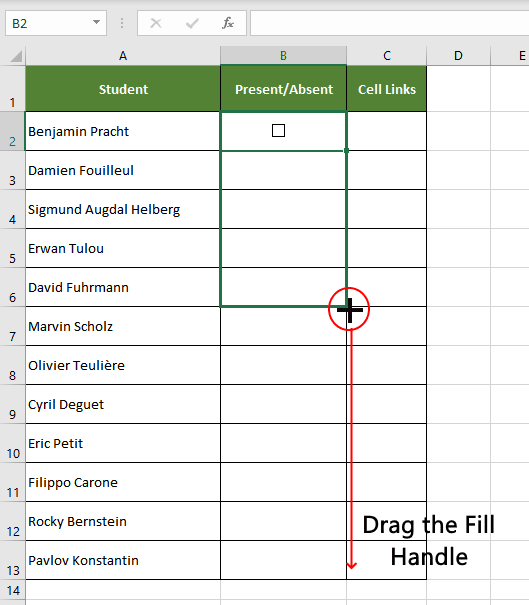 Drag the fill handle to copy the checkboxes