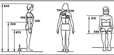 antropometria La Antropometria