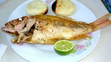 incorporar pescado a la dieta