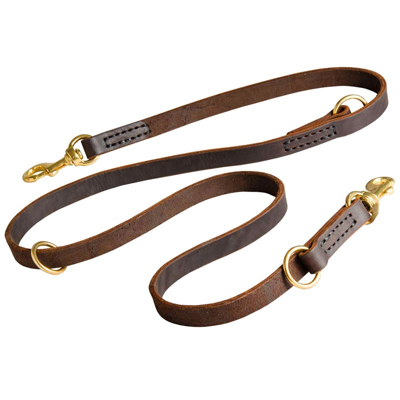 Multifunctional Leather Dog Leash [L120#1144 20 mm Leather