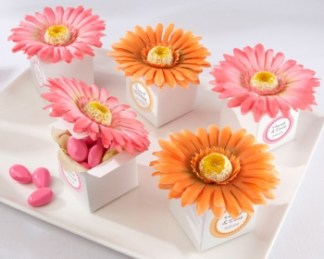 Boxes with sugar almonds