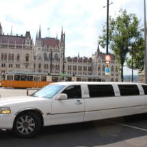 exclusive limousine