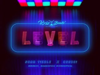"Krizbeatz – ""Level"" ft Sean Tizzle & Ceeboi"