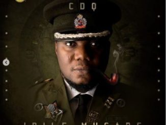 cdq want ft. wizkid mp3 download