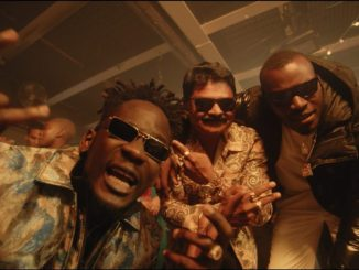 mr eazi chicken curry ft. sneakbo & just sul mp4 video download