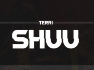 starboy terri shuu mp3 download