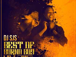 dj sjs best of burnaboy mix-tape 2019