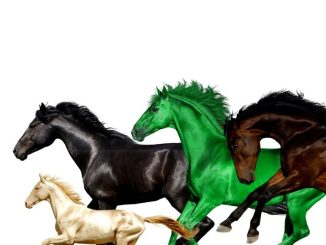 Lil nas x old town road remix download