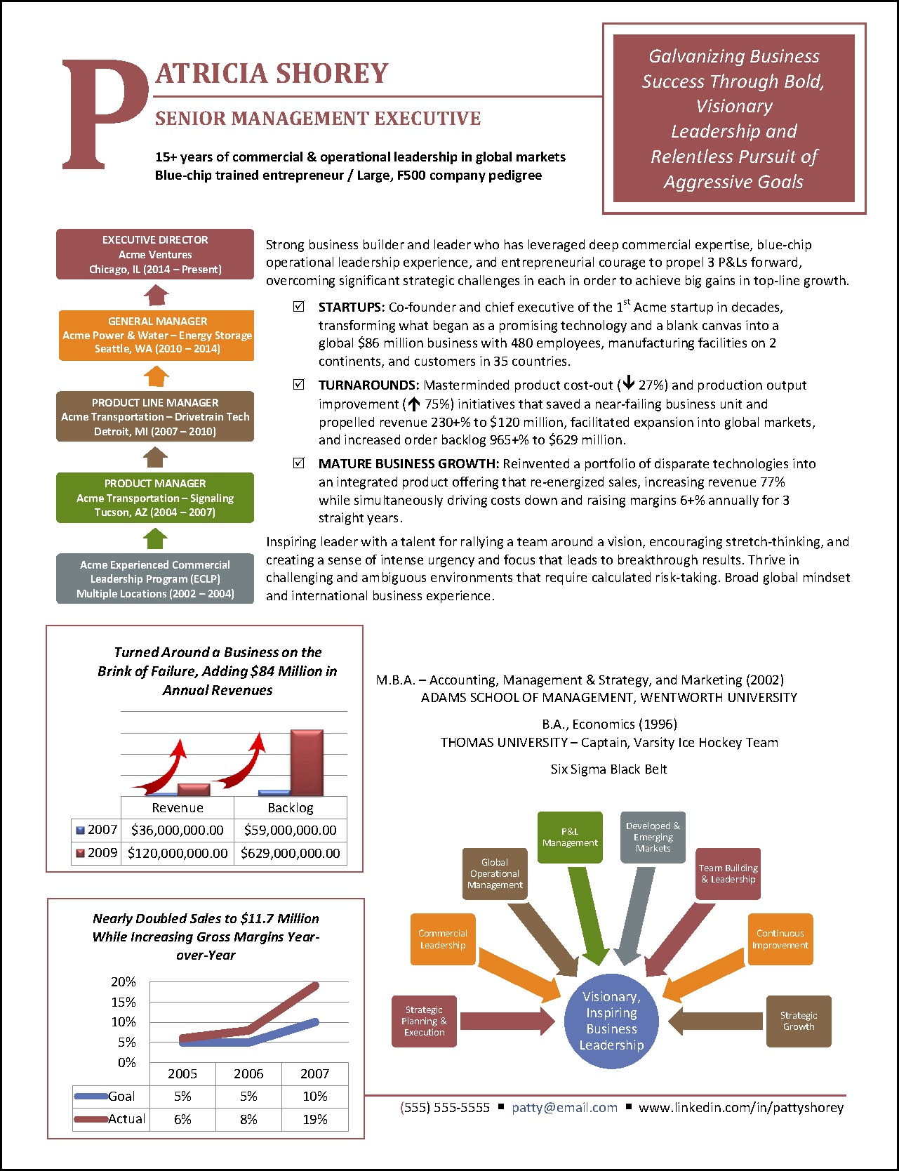 Infographic Resume Example For Executive