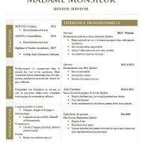 CV d'une Serveuse ou d'un Serveur
