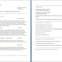 Exemple de C.V. d'une technicienne ou technicien en génie civil