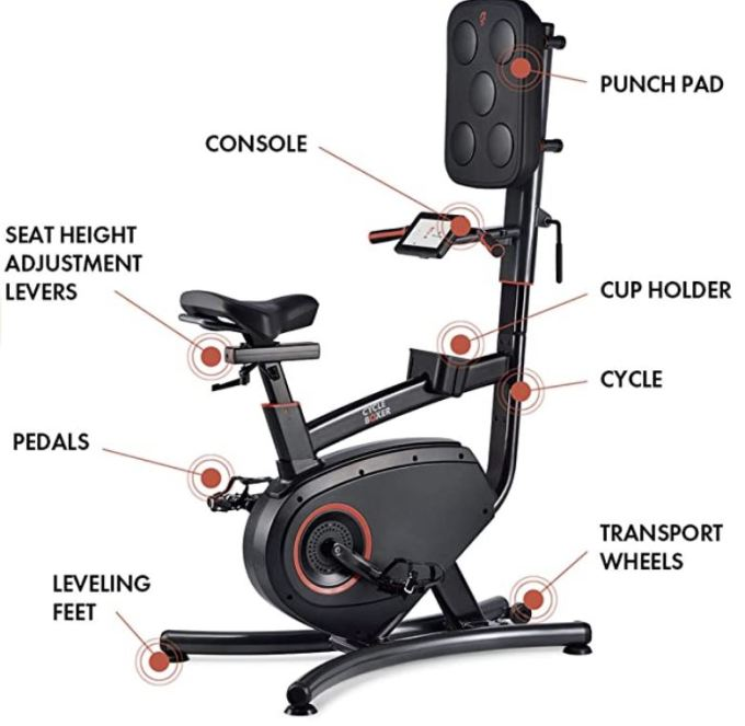 lifespan fitness cycle boxer review