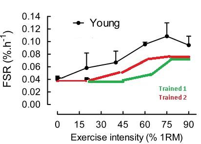 Are low reps (1-6) better than high reps (8-12) for muscle