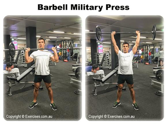 Barbell Military Press  exercisescomau
