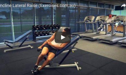 Exercises Fitness Workouts Classes