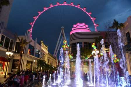 Las Vegas industry leaders to rally in support of NAMID at The Linq.