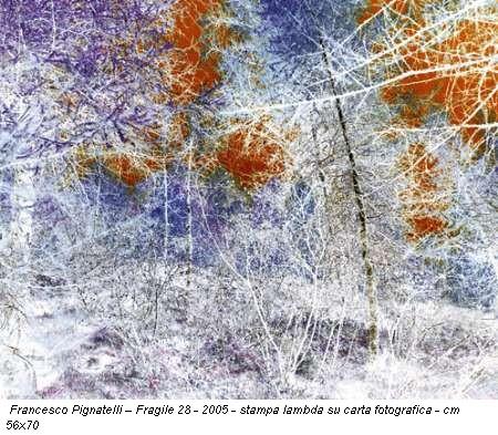 Francesco Pignatelli - Fragile 28 - 2005 - stampa lambda su carta fotografica - cm 56x70